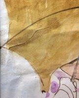 Damage-Detail